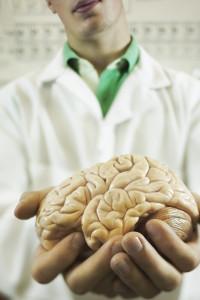 Los Angeles Medical Malpractice Attorney doctor brain
